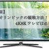 【検証】東京オリンピックの観戦方法!4K8Kテレビは必須か?